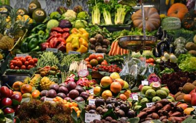 Mots Croisés – Décrire la nourriture